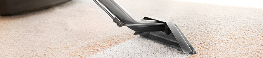 Carpet Cleaning in Sussex